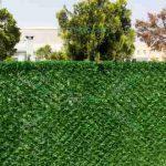 حصار چمنی