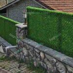 چمن دیواری